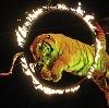 Цирки в Кикерино